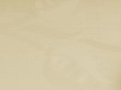 Плита МДФ глянец AGT PAN122-18 тюльпан кремовый, 650/1342, 1220*18*2795 мм