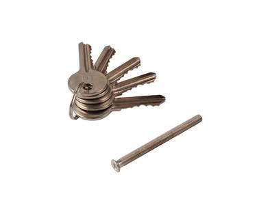 Цилиндр профильный ELEMENTIS 45/50, 5 ключей, никелированный Изображение 2