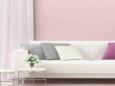 Краска Primalex Inspiro Цветущая Сакура 1л Изображение 3