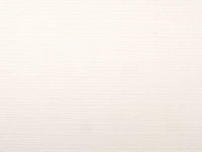 Стеновая панель для кухни VEROY (Изысканный белый, 3050x600x6 мм) Изображение