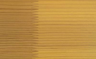 Лак фасадный Rhenocoll Impragnierlasur 52S c защитой от синевы, сосна, шелковисто-глянцевый 1л Изображение 2