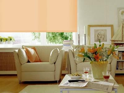 Рулонные шторы однотонные, 68х170 см. Светлый абрикос Изображение 2