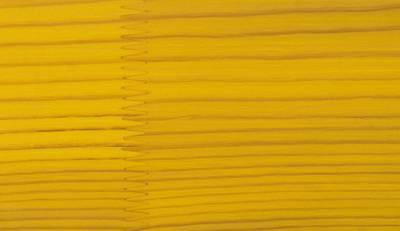 Лак фасадный ZOBEL Deco-tec 5400/5420, Gelb 1.41 шелковисто-матовый, 1л Изображение 2